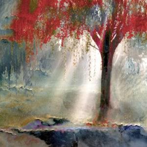 Red Tree by Todd Krasovetz